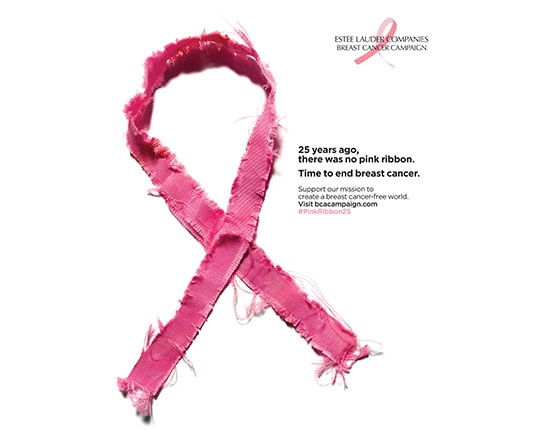 The Breast Cancer Campaign – The Estée Lauder Companies Inc